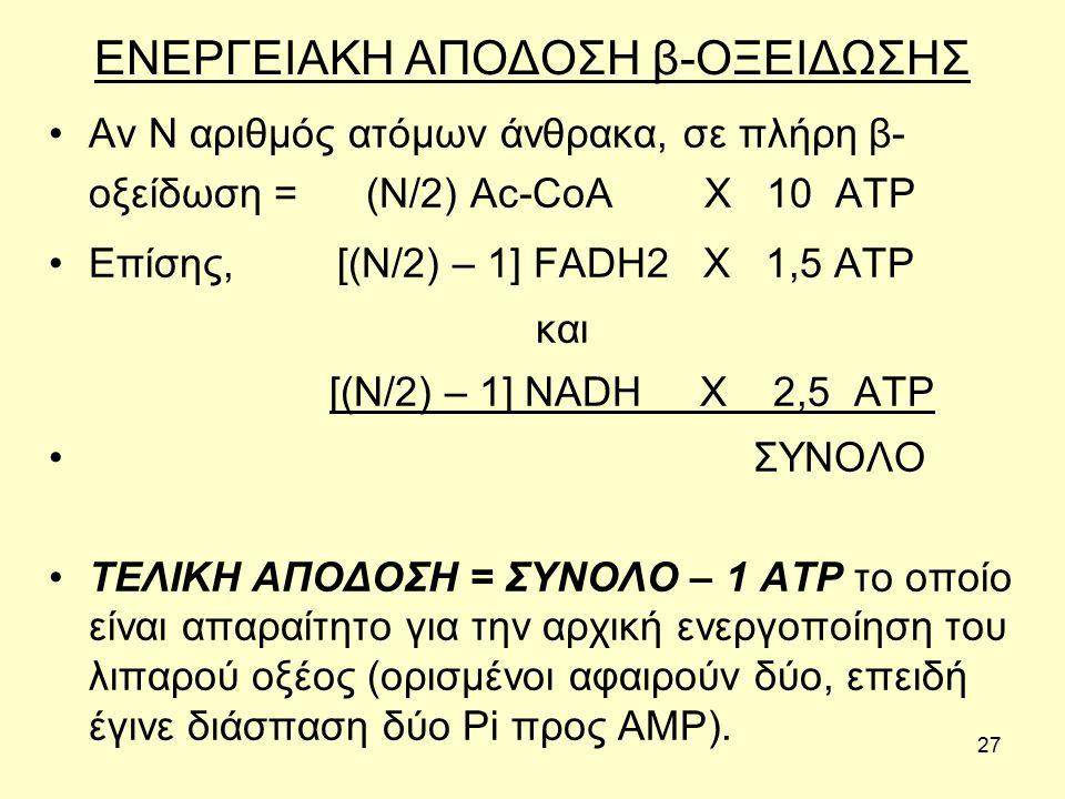 27 ΕΝΕΡΓΕΙΑΚΗ ΑΠΟΔΟΣΗ β-ΟΞΕΙΔΩΣΗΣ Αν Ν αριθμός ατόμων άνθρακα, σε πλήρη β- οξείδωση = (Ν/2) Ac-CoA X 10 ATP Επίσης, [(Ν/2) – 1] FADH2 X 1,5 ATP και [(N/2) – 1] NADH X 2,5 ATP ΣΥΝΟΛΟ ΤΕΛΙΚΗ ΑΠΟΔΟΣΗ = ΣΥΝΟΛΟ – 1 ATP το οποίο είναι απαραίτητο για την αρχική ενεργοποίηση του λιπαρού οξέος (ορισμένοι αφαιρούν δύο, επειδή έγινε διάσπαση δύο Pi προς AMP).
