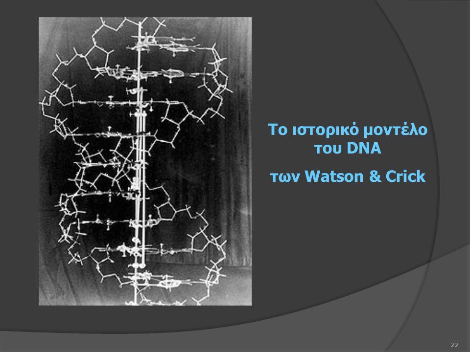 22 Το ιστορικό μοντέλο του DNA των Watson & Crick