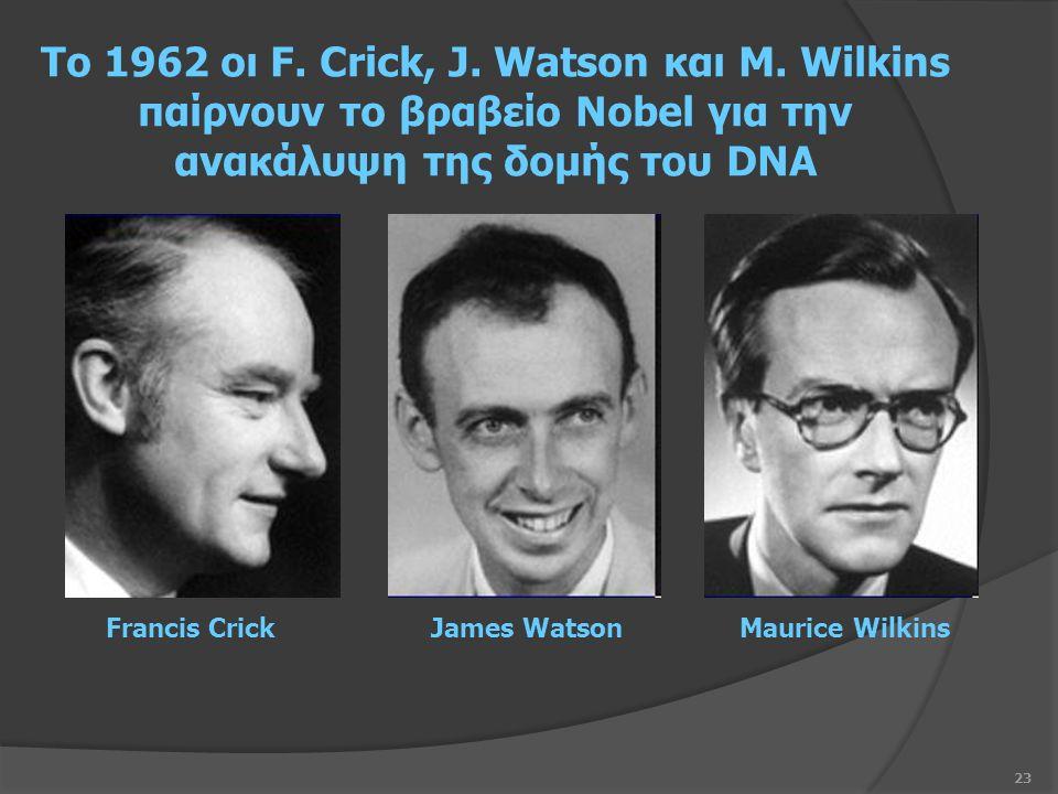 23 Το 1962 οι F. Crick, J. Watson και M.