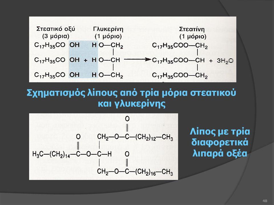 48 Σχηματισμός λίπους από τρία μόρια στεατικού και γλυκερίνης Λίπος με τρία διαφορετικά λιπαρά οξέα
