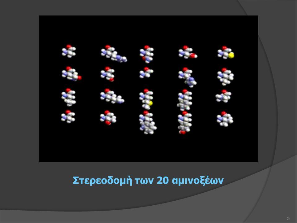 5 Στερεοδομή των 20 αμινοξέων