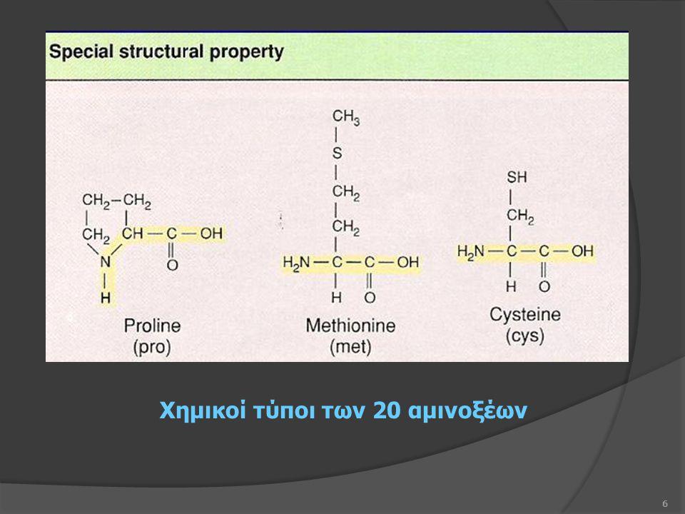 6 Χημικοί τύποι των 20 αμινοξέων