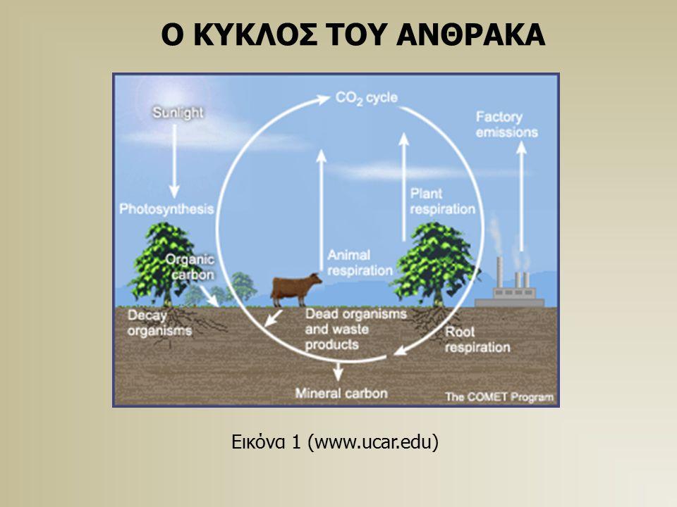 Ο ΚΥΚΛΟΣ ΤΟΥ ΑΝΘΡΑΚΑ Εικόνα 1 (www.ucar.edu)