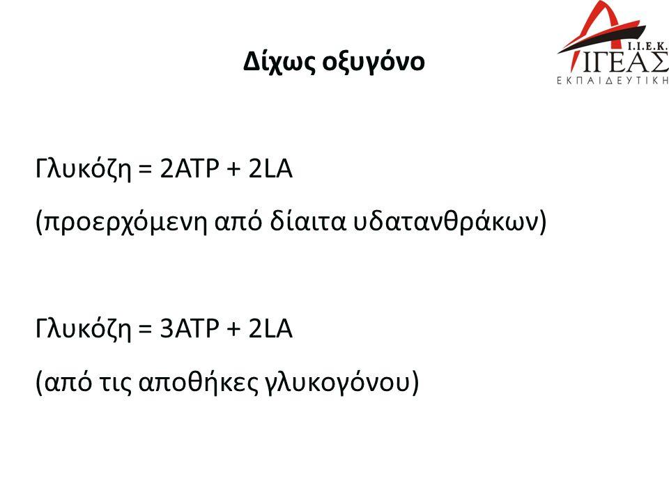 Δίχως οξυγόνο Γλυκόζη = 2ATP + 2LA (προερχόμενη από δίαιτα υδατανθράκων) Γλυκόζη = 3ATP + 2LA (από τις αποθήκες γλυκογόνου)