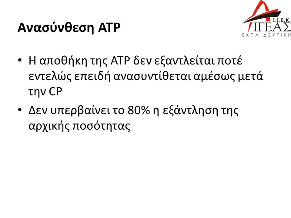 Ανασύνθεση ΑΤΡ Η αποθήκη της ΑΤΡ δεν εξαντλείται ποτέ εντελώς επειδή ανασυντίθεται αμέσως μετά την CP Δεν υπερβαίνει το 80% η εξάντληση της αρχικής ποσότητας