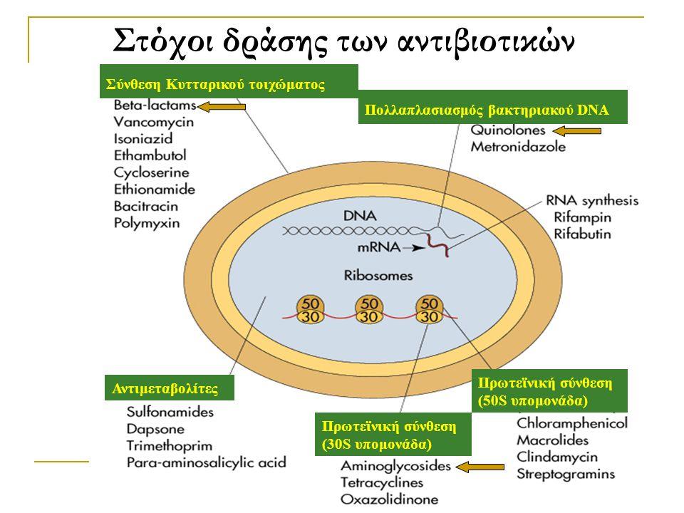 Στόχοι δράσης των αντιβιοτικών Σύνθεση Κυτταρικού τοιχώματος Πολλαπλασιασμός βακτηριακού DNA Αντιμεταβολίτες Πρωτεϊνική σύνθεση (30S υπομονάδα) Πρωτεϊ