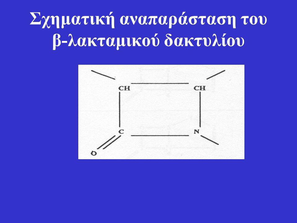 Σχηματική αναπαράσταση του β-λακταμικού δακτυλίου