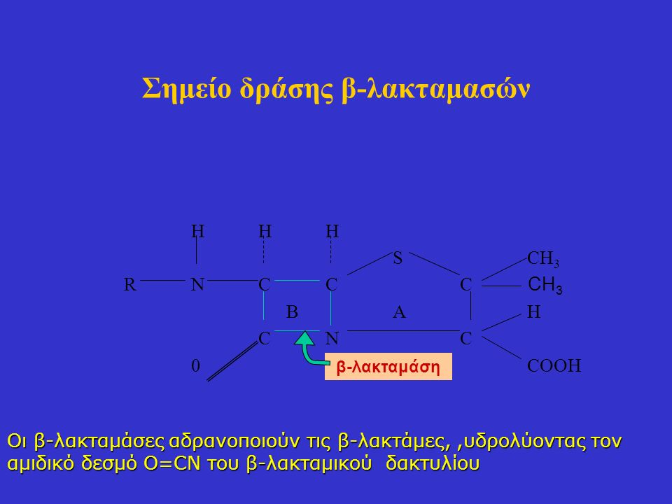 Σημείο δράσης β-λακταμασών HHH SCH 3 RNCCC BAH CNC 0COOH CH 3 β-λακταμάση Οι β-λακταμάσες αδρανοποιούν τις β-λακτάμες,,υδρολύοντας τον αμιδικό δεσμό O