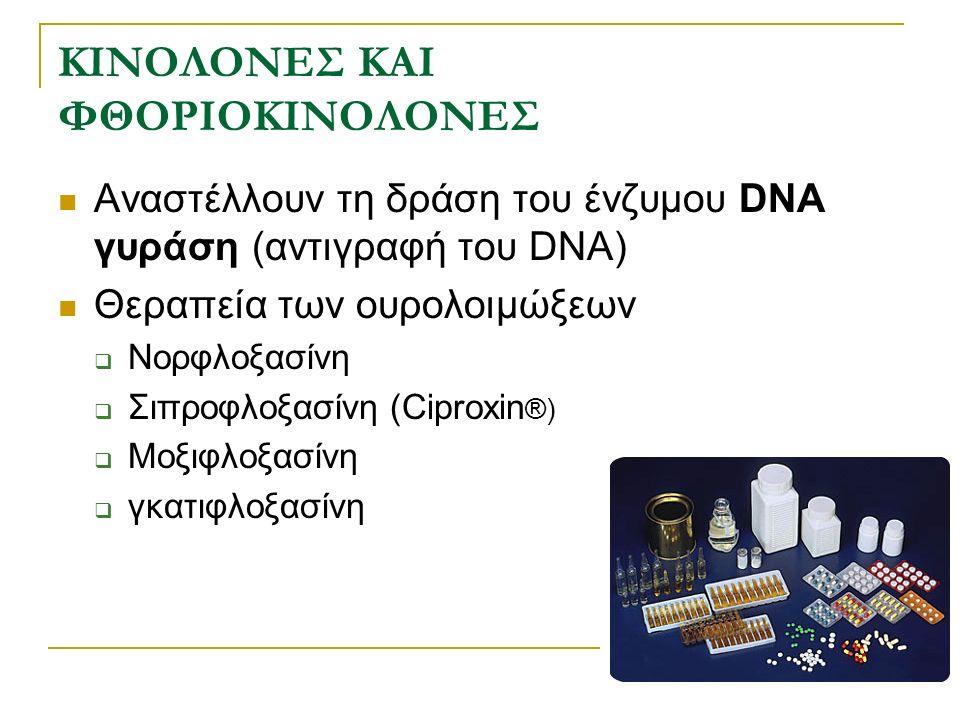 Μηχανισμός δράσης κινολονών Τοποϊσομεράση IV DNA γυράση Αντιγραφή DNA Μεταγραφή DNA Κινολόνες