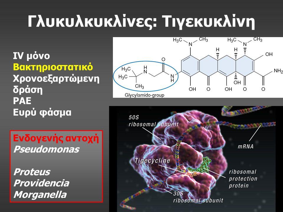 Γλυκυλκυκλίνες: Τιγεκυκλίνη IV μόνο Βακτηριοστατικό Χρονοεξαρτώμενη δράση PAE Ευρύ φάσμα Ενδογενής αντοχή Pseudomonas Proteus Providencia Morganella