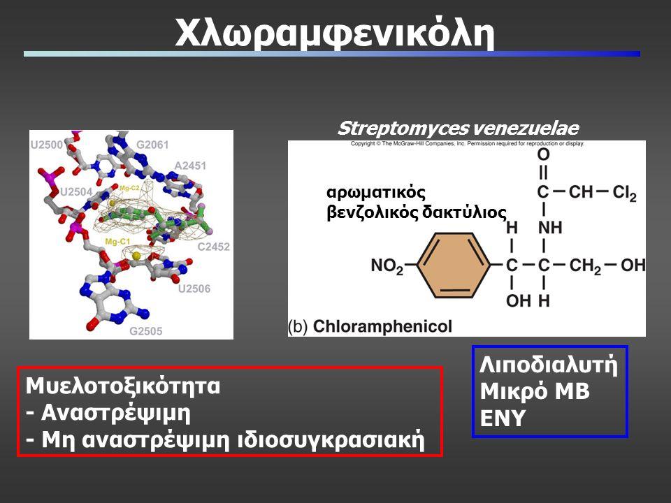 Χλωραμφενικόλη Streptomyces venezuelae αρωματικός βενζολικός δακτύλιος Μυελοτοξικότητα - Αναστρέψιμη - Μη αναστρέψιμη ιδιοσυγκρασιακή Λιποδιαλυτή Μικρό ΜΒ ΕΝΥ