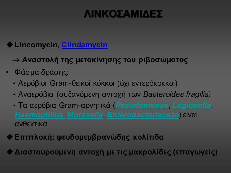 ΛΙΝΚΟΣΑΜΙΔΕΣ  Lincomycin, Clindamycin  Αναστολή της μετακίνησης του ριβοσώματος Φάσμα δράσης:  Αερόβιοι Gram-θεικοί κόκκοι (όχι εντερόκοκκοι)  Αναερόβια (αυξανόμενη αντοχή των Bacteroides fragilis)  Τα αερόβια Gram-αρνητικά (Pseudomonas, Legionella, Haemophilus, Moraxella, Enterobacteriaceae) είναι ανθεκτικάPseudomonasLegionella Haemophilus,MoraxellaEnterobacteriaceae  Επιπλοκή: ψευδομεμβρανώδης κολίτιδα  Διασταυρούμενη αντοχή με τις μακρολίδες (επαγωγείς)