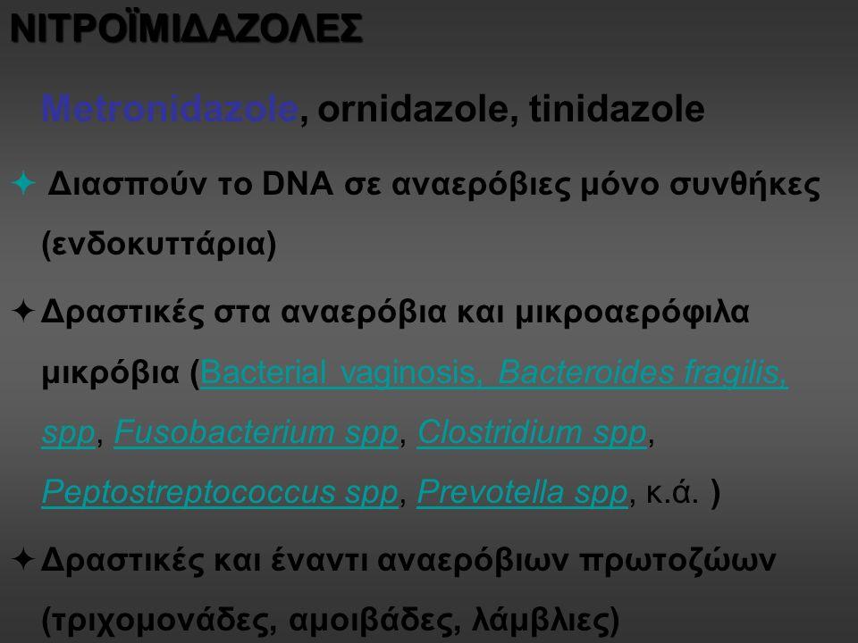 ΝΙΤΡΟΪΜΙΔΑΖΟΛΕΣ Metronidazole, ornidazole, tinidazole  Διασπούν το DNA σε αναερόβιες μόνο συνθήκες (ενδοκυττάρια)  Δραστικές στα αναερόβια και μικροαερόφιλα μικρόβια (Bacterial vaginosis, Bacteroides fragilis, spp, Fusobacterium spp, Clostridium spp, Peptostreptococcus spp, Prevotella spp, κ.ά.