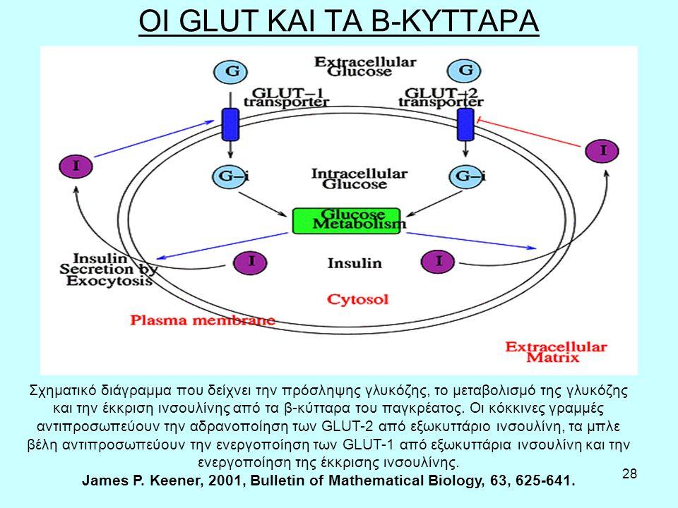 28 OI GLUT ΚΑΙ ΤΑ Β-ΚΥΤΤΑΡΑ Σχηματικό διάγραμμα που δείχνει την πρόσληψης γλυκόζης, το μεταβολισμό της γλυκόζης και την έκκριση ινσουλίνης από τα β-κύτταρα του παγκρέατος.