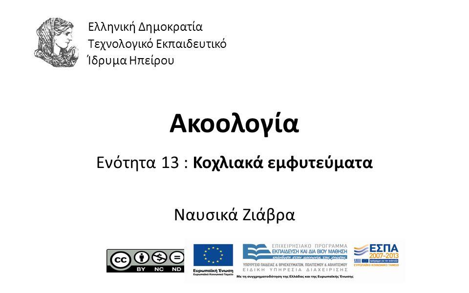 1 Ακοολογία Ενότητα 13 : Κοχλιακά εμφυτεύματα Ναυσικά Ζιάβρα Ελληνική Δημοκρατία Τεχνολογικό Εκπαιδευτικό Ίδρυμα Ηπείρου