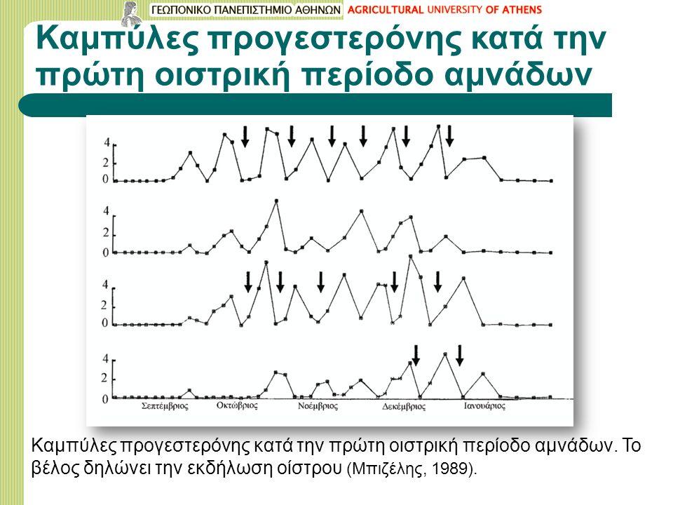 Καμπύλες προγεστερόνης κατά την πρώτη οιστρική περίοδο αμνάδων Καμπύλες προγεστερόνης κατά την πρώτη οιστρική περίοδο αμνάδων.