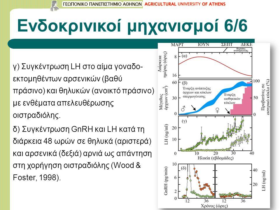 Ενδοκρινικοί μηχανισμοί 6/6 γ) Συγκέντρωση LH στο αίμα γοναδο- εκτομηθέντων αρσενικών (βαθύ πράσινο) και θηλυκών (ανοικτό πράσινο) με ενθέματα απελευθέρωσης οιστραδιόλης.