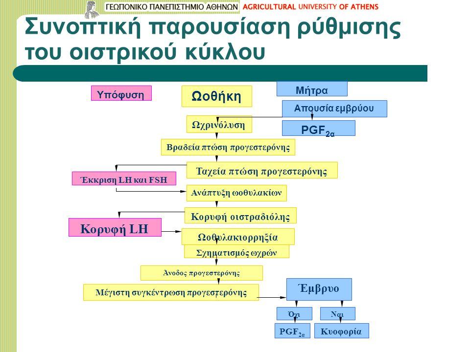 Συνοπτική παρουσίαση ρύθμισης του οιστρικού κύκλου Υπόφυση Ωοθήκη Μήτρα Απουσία εμβρύου PGF 2α Ωχρινόλυση Βραδεία πτώση προγεστερόνης Ταχεία πτώση προγεστερόνης Έκκριση LH και FSH Ανάπτυξη ωοθυλακίων Κορυφή οιστραδιόλης Κορυφή LH Ωοθυλακιορρηξία Σχηματισμός ωχρών Άνοδος προγεστερόνης Μέγιστη συγκέντρωση προγεστερόνης Έμβρυο Όχι PGF 2α Ναι Κυοφορία