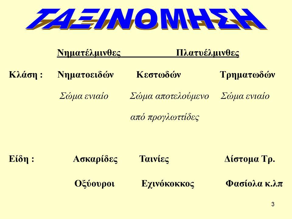 3 Νηματέλμινθες Πλατυέλμινθες Κλάση : Νηματοειδών Κεστωδών Τρηματωδών Σώμα ενιαίο Σώμα αποτελούμενο Σώμα ενιαίο από προγλωττίδες Είδη : Ασκαρίδες Ταιν
