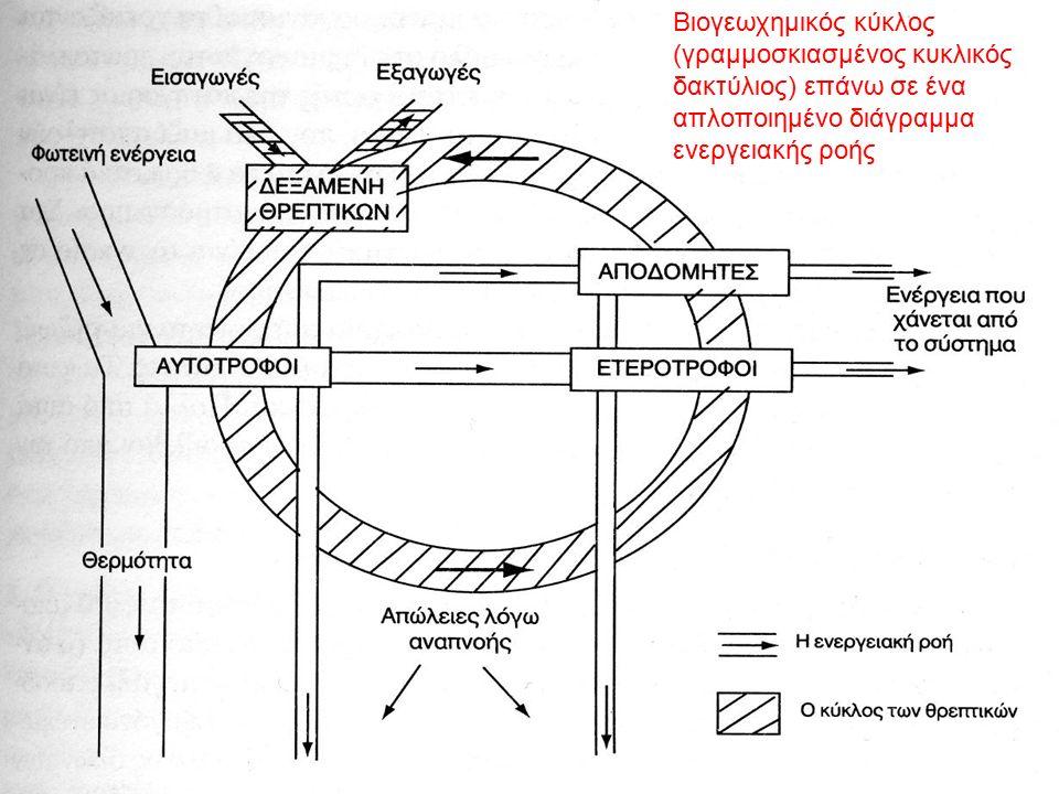 Βιογεωχημικός κύκλος (γραμμοσκιασμένος κυκλικός δακτύλιος) επάνω σε ένα απλοποιημένο διάγραμμα ενεργειακής ροής