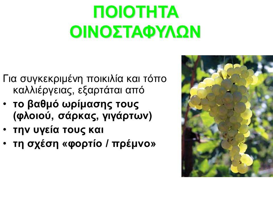 Για συγκεκριμένη ποικιλία και τόπο καλλιέργειας, εξαρτάται από το βαθμό ωρίμασης τους (φλοιού, σάρκας, γιγάρτων) την υγεία τους και τη σχέση «φορτίο / πρέμνο» ΠΟΙΟΤΗΤΑ ΟΙΝΟΣΤΑΦΥΛΩΝ