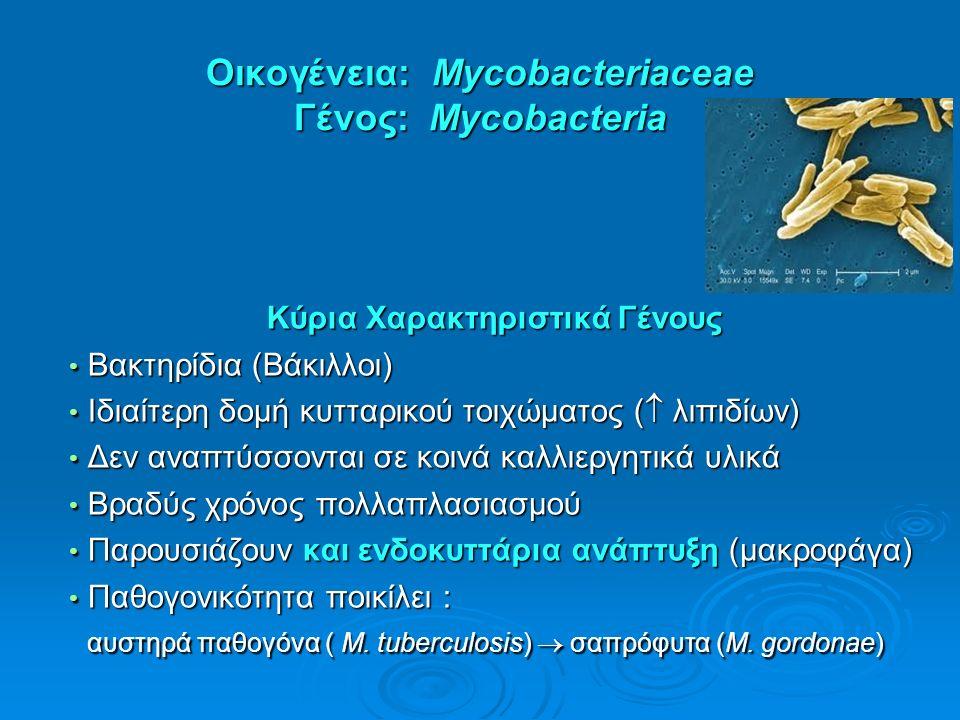 Οικογένεια: Mycobacteriaceae Γένος: Mycobacteria Κύρια Χαρακτηριστικά Γένους Βακτηρίδια (Βάκιλλοι) Βακτηρίδια (Βάκιλλοι) Ιδιαίτερη δομή κυτταρικού τοιχώματος (  λιπιδίων) Ιδιαίτερη δομή κυτταρικού τοιχώματος (  λιπιδίων) Δεν αναπτύσσονται σε κοινά καλλιεργητικά υλικά Δεν αναπτύσσονται σε κοινά καλλιεργητικά υλικά Βραδύς χρόνος πολλαπλασιασμού Βραδύς χρόνος πολλαπλασιασμού Παρουσιάζουν και ενδοκυττάρια ανάπτυξη (μακροφάγα) Παρουσιάζουν και ενδοκυττάρια ανάπτυξη (μακροφάγα) Παθογονικότητα ποικίλει : Παθογονικότητα ποικίλει : αυστηρά παθογόνα ( M.