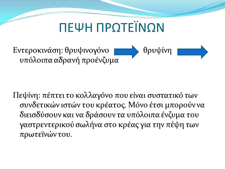 ΠΕΨΗ ΠΡΩΤΕΪΝΩΝ Εντεροκινάση: θρυψινογόνο θρυψίνη υπόλοιπα αδρανή προένζυμα Πεψίνη: πέπτει το κολλαγόνο που είναι συστατικό των συνδετικών ιστών του κρέατος.