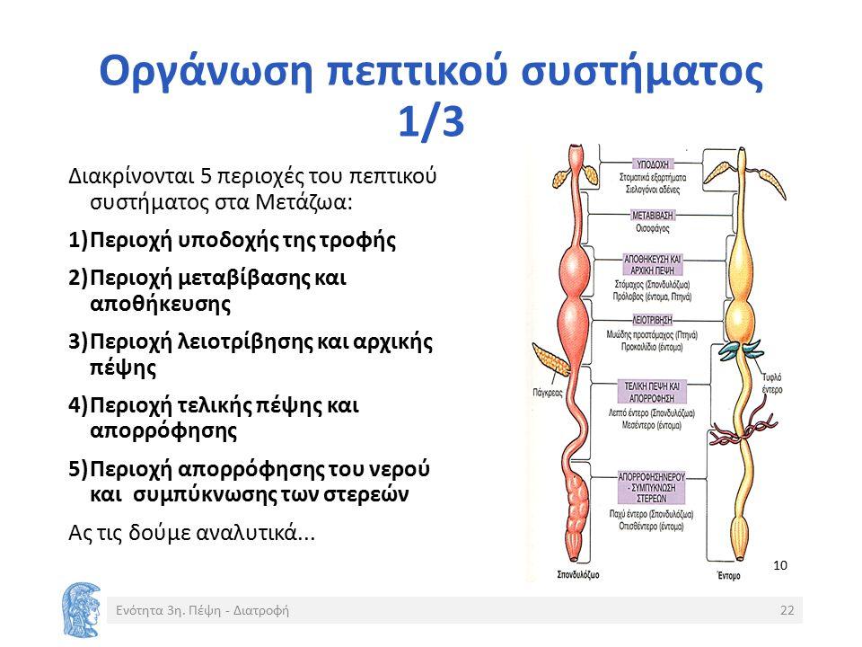Οργάνωση πεπτικού συστήματος 1/3 Διακρίνονται 5 περιοχές του πεπτικού συστήματος στα Μετάζωα: 1)Περιοχή υποδοχής της τροφής 2)Περιοχή μεταβίβασης και αποθήκευσης 3)Περιοχή λειοτρίβησης και αρχικής πέψης 4)Περιοχή τελικής πέψης και απορρόφησης 5)Περιοχή απορρόφησης του νερού και συμπύκνωσης των στερεών Ας τις δούμε αναλυτικά...