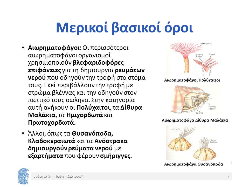 Μερικοί βασικοί όροι Αιωρηματοφάγοι: Οι περισσότεροι αιωρηματοφάγοι οργανισμοί χρησιμοποιούν βλεφαριδοφόρες επιφάνειες για τη δημιουργία ρευμάτων νερού που οδηγούν την τροφή στο στόμα τους.