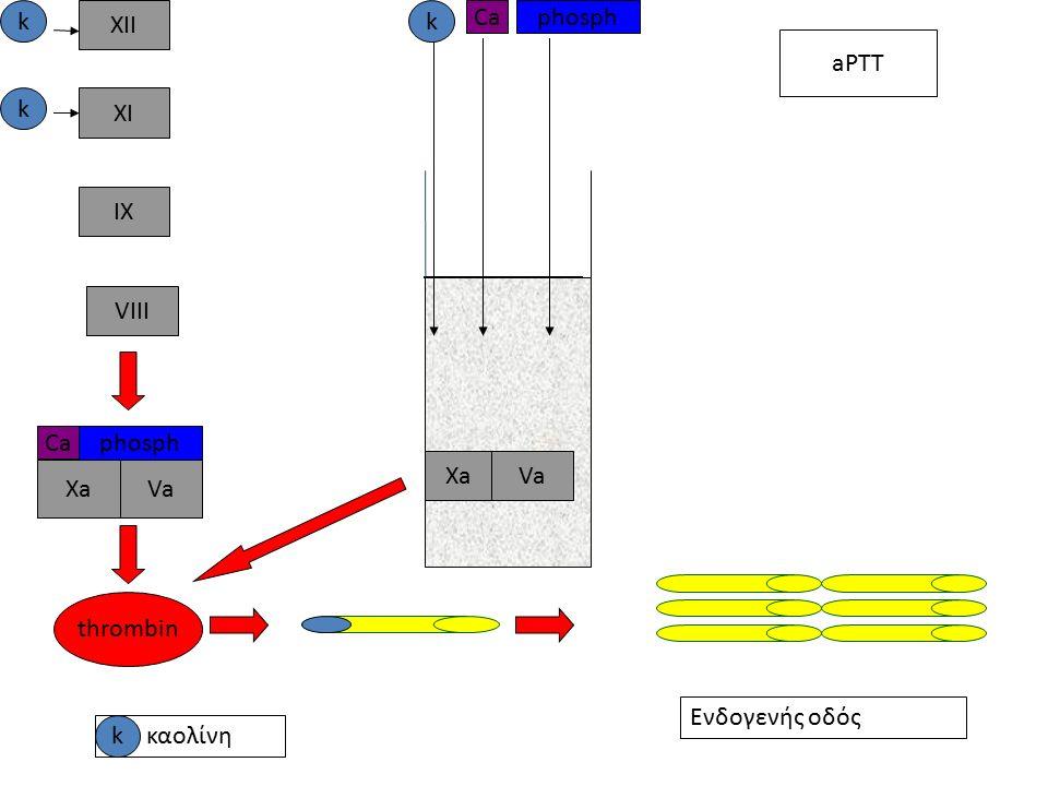 XII XI IX VIII XaVa Ca phosph thrombin k k k phosph Ca aPTT XaVaVa kκαολίνη Ενδογενής οδός