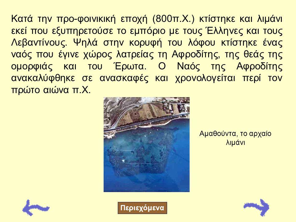 Στον Άγιο Τύχωνα βρίσκονται τα ερείπια ενός από τα πιο μεγάλα αρχαία βασίλεια του νησιού – της Αμαθούντας. Μια από τις αρχαιότερες βασιλικές πόλεις σύ