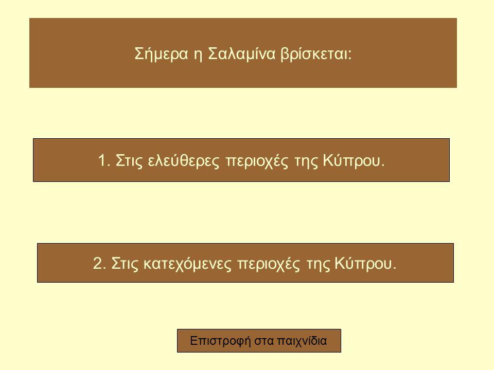 Στη Σαλαμίνα βρέθηκε το μεγαλύτερο: 1. θέατρο της Γεωμετρικής Εποχής στην Κύπρο. 2. γυμναστήριο της Γεωμετρικής Εποχής στην Κύπρο. Επιστροφή στα παιχν