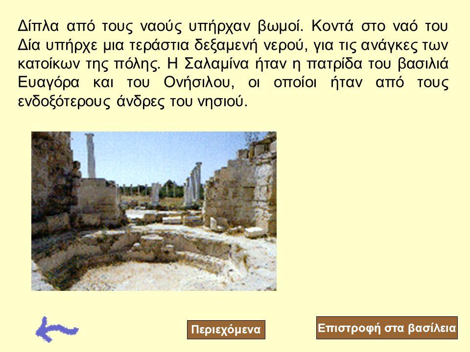 Στην πόλη της Σαλαμίνας λειτουργούσε θέατρο, Αγορά και Γυμναστήριο τα οποία διασώθηκαν από του αρχαιολόγους. Η αγορά της Σαλαμίνας ήταν η μεγαλύτερη σ