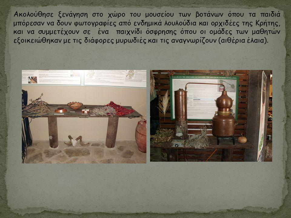 Ακολούθησε ξενάγηση στο χώρο του μουσείου των βοτάνων όπου τα παιδιά μπόρεσαν να δουν φωτογραφίες από ενδημικά λουλούδια και ορχιδέες της Κρήτης, και