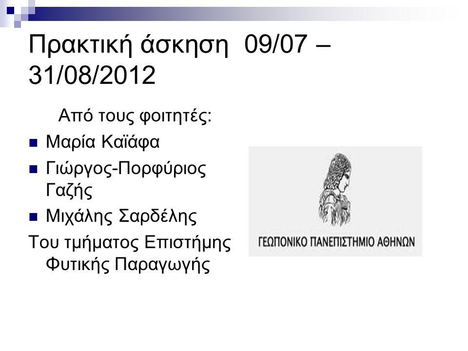 Πρακτική άσκηση 09/07 – 31/08/2012 Από τους φοιτητές: Μαρία Καϊάφα Γιώργος-Πορφύριος Γαζής Μιχάλης Σαρδέλης Του τμήματος Επιστήμης Φυτικής Παραγωγής