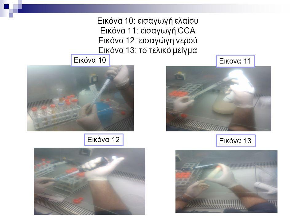 Εικόνα 10: εισαγωγή ελαίου Εικόνα 11: εισαγωγή CCA Eικόνα 12: εισαγώγη νερού Εικόνα 13: το τελικό μείγμα Εικονα 11 Εικόνα 10 Εικόνα 12 Εικόνα 13