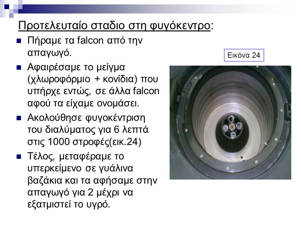 Προτελευταίο σταδιο στη φυγόκεντρο: Πήραμε τα falcon από την απαγωγό. Αφαιρέσαμε το μείγμα (χλωροφόρμιο + κονίδια) που υπήρχε εντώς, σε άλλα falcon αφ