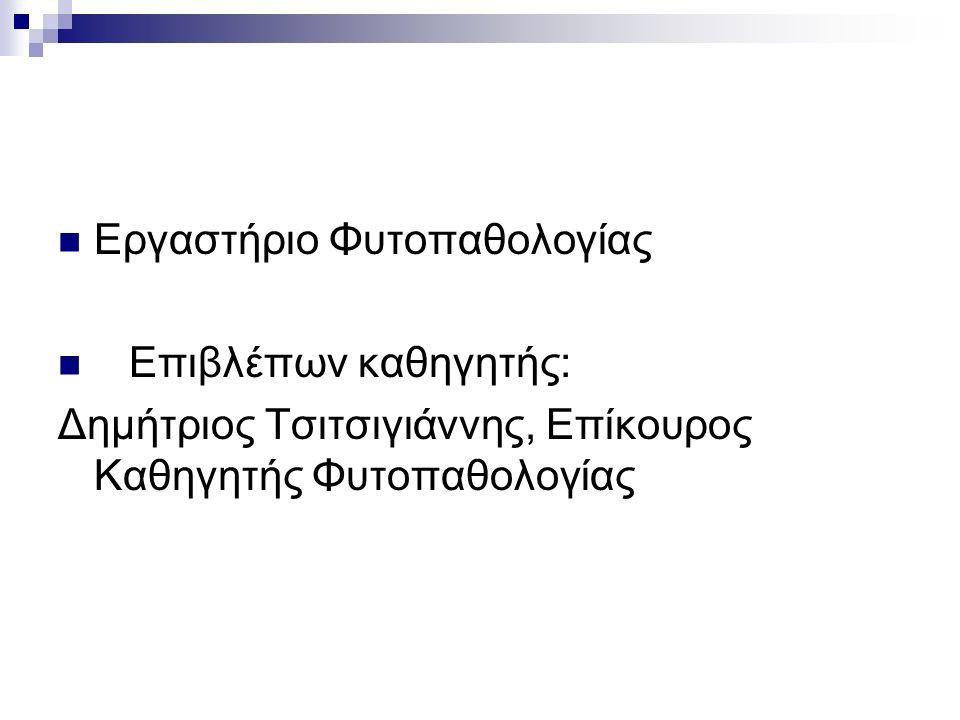 Εργαστήριο Φυτοπαθολογίας Επιβλέπων καθηγητής: Δημήτριος Τσιτσιγιάννης, Επίκουρος Καθηγητής Φυτοπαθολογίας