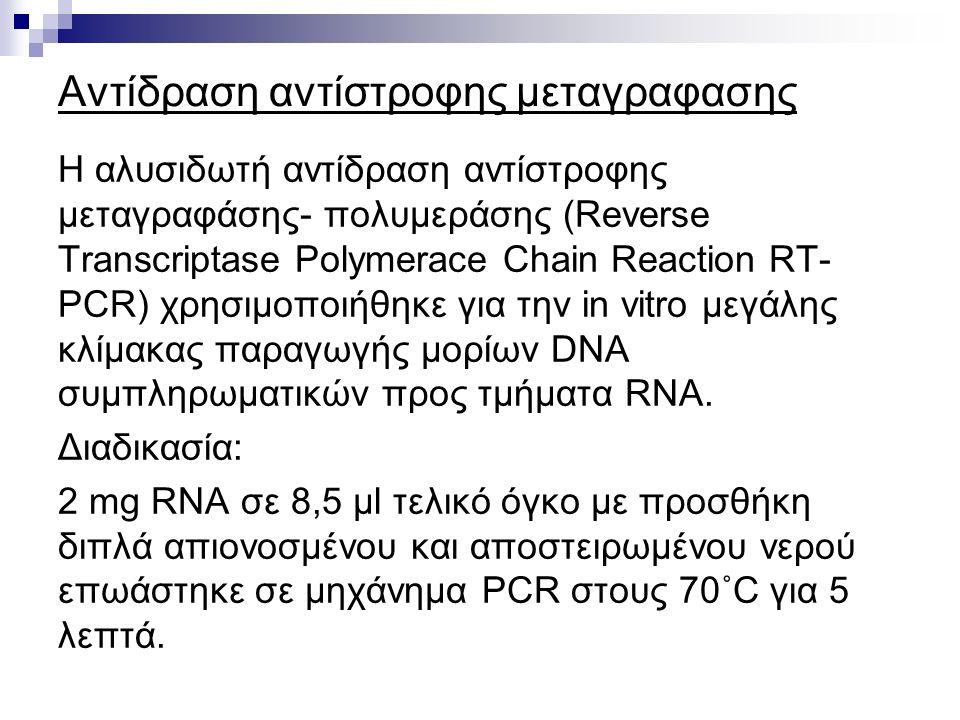 Αντίδραση αντίστροφης μεταγραφασης Η αλυσιδωτή αντίδραση αντίστροφης μεταγραφάσης- πολυμεράσης (Reverse Transcriptase Polymerace Chain Reaction RT- PCR) χρησιμοποιήθηκε για την in vitro μεγάλης κλίμακας παραγωγής μορίων DNA συμπληρωματικών προς τμήματα RNA.