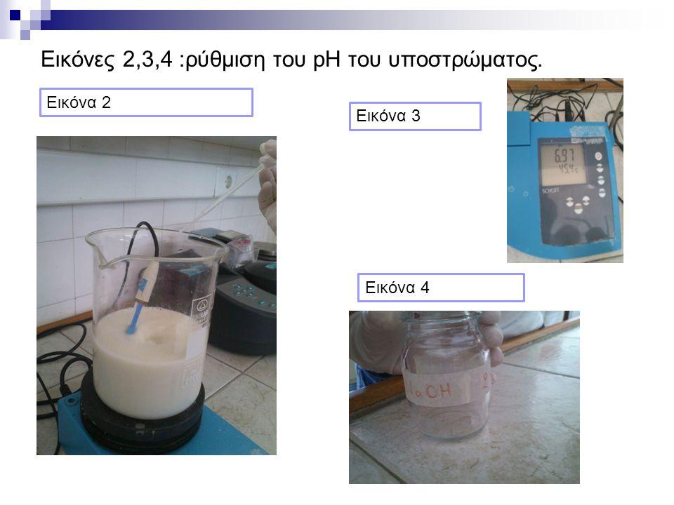 Εικόνες 2,3,4 :ρύθμιση του pH του υποστρώματος. Εικόνα 2 Εικόνα 3 Εικόνα 4