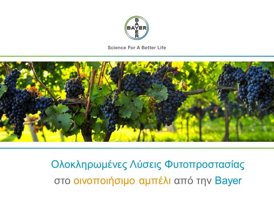 Ολοκληρωμένες Λύσεις Φυτοπροστασίας στο οινοποιήσιμο αμπέλι από την Bayer