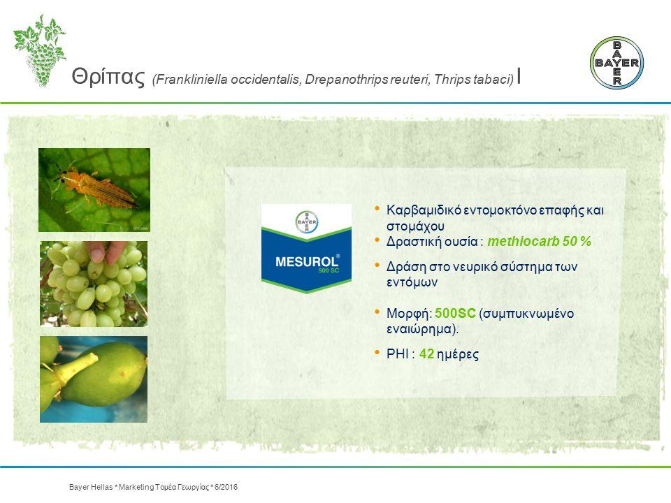 Θρίπας (Frankliniella occidentalis, Drepanothrips reuteri, Thrips tabaci) Ι Καρβαμιδικό εντομοκτόνο επαφής και στομάχου Δραστική ουσία : methiocarb 50