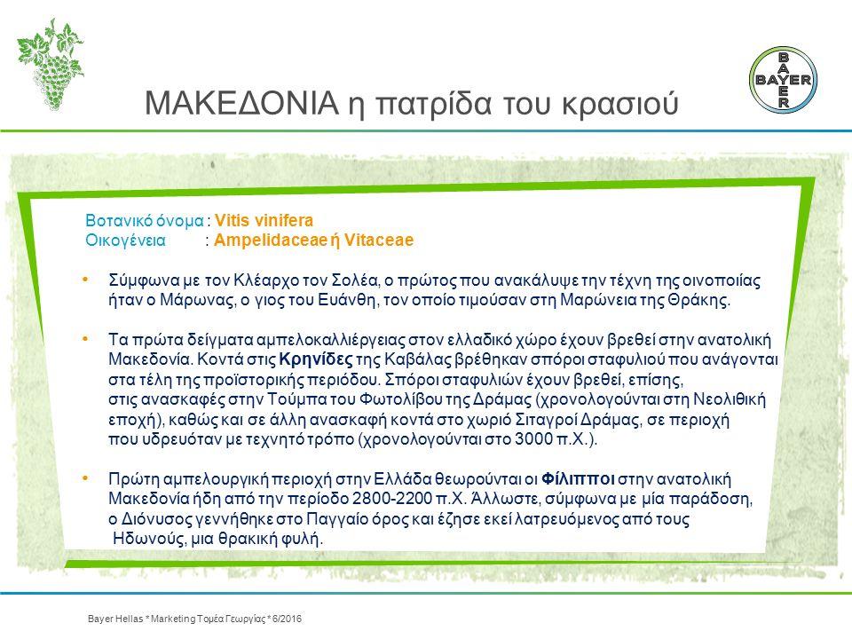 Bayer Hellas * Marketing Τομέα Γεωργίας * 6/2016 ΜΑΚΕΔΟΝΙΑ η πατρίδα του κρασιού Βοτανικό όνομα : Vitis vinifera Οικογένεια : Ampelidaceae ή Vitaceae