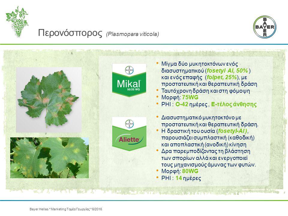 Περονόσπορος (Plasmopara viticola) Μίγμα δύο μυκητοκτόνων ενός διασυστηματικού (fosetyl Αl, 50% ) και ενός επαφής (folpet, 25%), με προστατευτική και