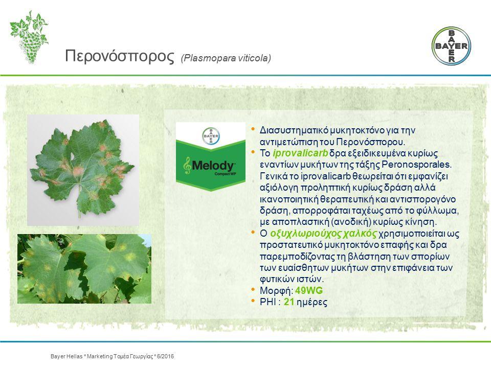 Περονόσπορος (Plasmopara viticola) Διασυστηματικό μυκητοκτόνο για την αντιμετώπιση του Περονόσπορου. Το iprovalicarb δρα εξειδικευμένα κυρίως εναντίων
