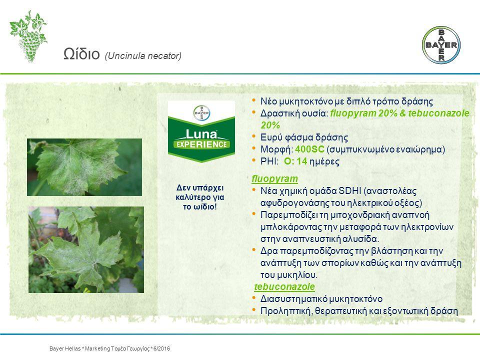 Ωίδιο (Uncinula necator) Νέο μυκητοκτόνο με διπλό τρόπο δράσης Δραστική ουσία: fluopyram 20% & tebuconazole 20% Ευρύ φάσμα δράσης Μορφή: 400SC (συμπυκ