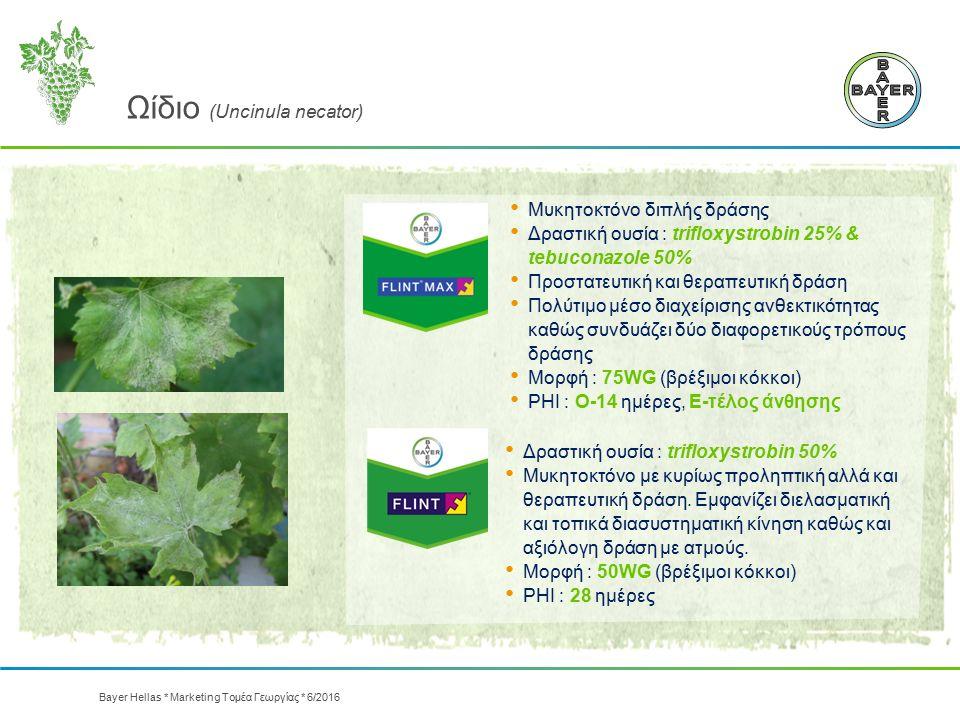 Μυκητοκτόνο διπλής δράσης Δραστική ουσία : trifloxystrobin 25% & tebuconazole 50% Προστατευτική και θεραπευτική δράση Πολύτιμο μέσο διαχείρισης ανθεκτ