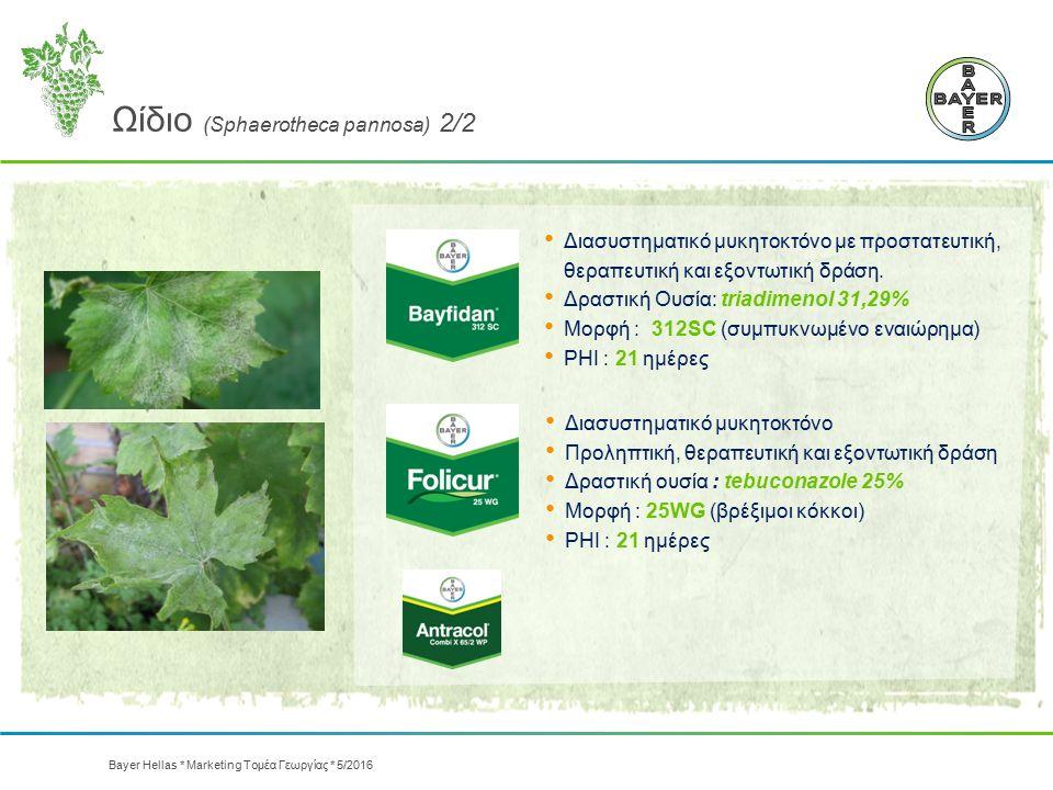 Ωίδιο (Sphaerotheca pannosa) 2/2 Διασυστηματικό μυκητοκτόνο Προληπτική, θεραπευτική και εξοντωτική δράση Δραστική ουσία : tebuconazole 25% Μορφή : 25W