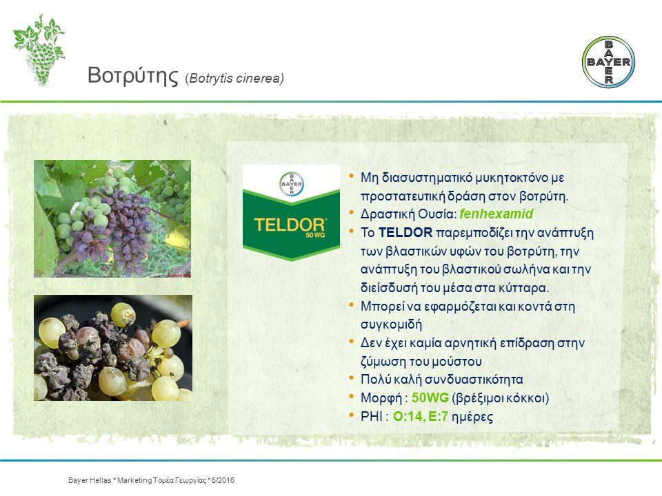 Βοτρύτης (Botrytis cinerea) Μη διασυστηματικό μυκητοκτόνο με προστατευτική δράση στον βοτρύτη. Δραστική Oυσία: fenhexamid Το TELDOR παρεμποδίζει την α