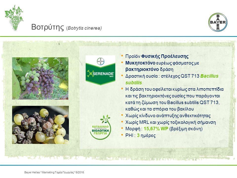 Βοτρύτης (Botrytis cinerea) Προϊόν Φυσικής Προέλευσης Μυκητοκτόνο ευρέως φάσματος με βακτηριοκτόνο δράση Δραστική ουσία : στέλεχος QST 713 Bacillus su